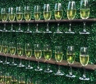 Champagne Wall Hire | Prosecco Wall Hire | Plum Crazy Agency