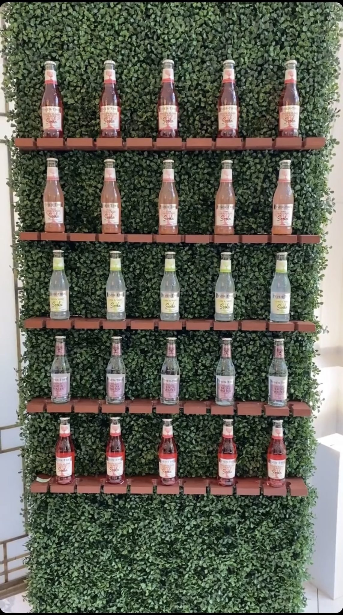 Plum Crazy Agency Champagne Backdrop Walls for Hire